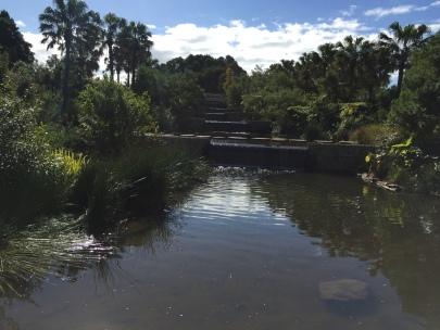 Sydney Park 5